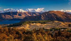 Снимка: Soft morning light  This is how beautiful the day starts in Wanaka, New…