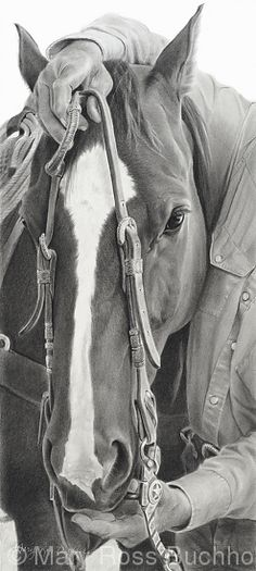 """A Days Start by Mary Ross Buchholz Graphite  Charcoal ~ 19"""" x 8.5"""""""
