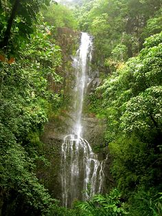 Hana's waterfalls, Maui, Hawaii Copyright: Antonio Rusevski OK when is the plane leaving! Great Places, Places To See, Beautiful World, Beautiful Places, Vacation Trips, Vacations, Photos Voyages, Beautiful Waterfalls, Destinations