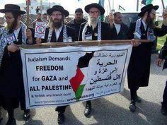 #Save_Gaza #Save_Palestine #Palestine