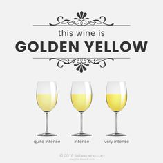"""Let's describe wine """"Greenish yellow"""" The greenish yellow color is very typical among the white wine products, found in young and fresh wines. It is obtained using premature grapes and its greenish reflections are due to chlorophyll residues. Italian Wine, Golden Yellow, Wine Tasting, White Wine, Wines, Wine Glass, Alcoholic Drinks, Color, Amber"""