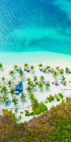 CocoCay, Bahamas   What would you do with 8 hours in CocoCay? The impeccable coast in the Bahamas is accentuated by palm trees, private cabanas, and exclusive experiences. Cruise to the Bahamas and spend a day in Royal Caribbean's private island, CocoCay.