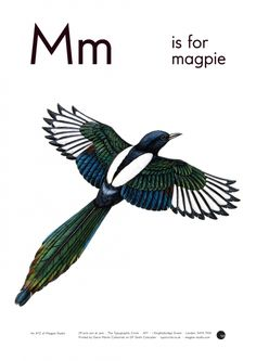 M is for Magpie | Archive | The Typographic Circle