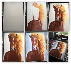 kůň náhled