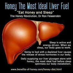 Liver fuel
