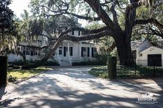 Southern Charm with a twist! #BeaufortSC #Luvbft #bftlife #oaktree #spanishmoss