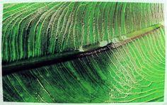 3D spot UV printing - Leaf  #innovariant #leaf #scodix #3d #uv #printing #nature #paper