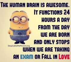 Cute Funny Minions images sept 2015 (01:41:20 AM, Wednesday 09, September 2015 PDT) – 10 pics