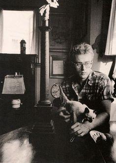 James Dean and a kitten. Awwww.