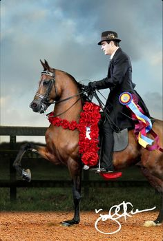 Joel Kiesner. 2012 APAHA Hall of Fame, 2003 Horseman of the Year, USEF Equestrian of the Year Finalist, 6-time Arabian National Champion Open English Pleasure.