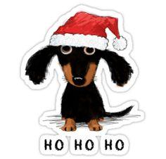 Dachshund Funny, Dapple Dachshund, Dachshund Art, Dachshund Puppies, Funny Dogs, Daschund, Celebrity Dogs, Weenie Dogs, Dog Ornaments