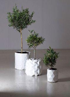 горшки Growth, которые растут вместе с растениями