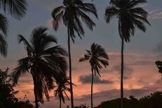 Atardecer en Isla Mucura, Colombia. San Bernardo, Celestial, Sunset, Beach, Water, Travel, Outdoor, Cartagena, Paths