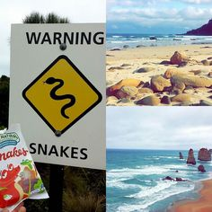 #GreatOceanRoad #Australia #NoFilter #Beach #12Apostles #Warning #Snakes #NotReally by mcaussie