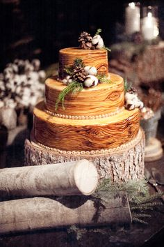 Wedding Cake of the Day: Rustic Wood Cake Wood Cake, Elegant Winter Wedding, Rustic Wedding, Wedding Ideas, Forest Wedding, Woodland Wedding, Wedding Photos, Wedding Trends, Wedding Decor