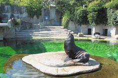 Artis Royal Zoo: A Kid-Friendly Must-Visit Attraction in Amsterdam - http://travelr.co/uncategorized/artis-royal-zoo-a-kid-friendly-must-visit-attraction-in-amsterdam-2/