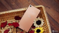 Xperia Z3 Copper Color Model