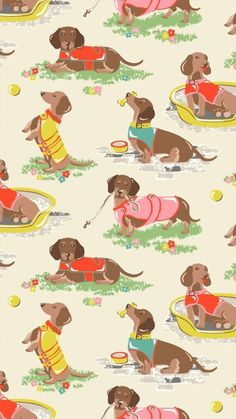 Imagem de background, dachshund, and dog Mini Dachshund, Dachshund Puppies, Lab Puppies, Dog Love, Puppy Love, Dashund, Weenie Dogs, Doggies, Dog Illustration