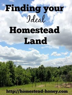 Finding a piece of land to homestead can be an overwhelming process.  This post will guide you in articulating a clear vision for HOW you will use the land and WHAT your priorities and needs really are. | Homestead Honey