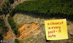 "3M is associated with clearcuts: ""3M's approach to forestry is irresponsible, extremely destructive, and completely out of line with what today's consumers expect,"" said Jim Ace of ForestEthics. ""Post-it notes with no recycled content, sandpaper that comes from endangered caribou habitat, and sponges that are linked to human rights violations have no place on the shelves of the 21st century. 3M has put its brand at risk by sourcing paper from controversial sources."""