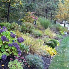 Seasonal Views of a Special Garden in MA