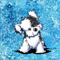 Curious Havanese Painting by Kim Niles - Curious Havanese Fine Art Prints and Posters for Sale