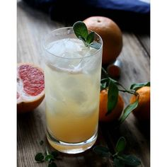 Citrus Sage Vodka Cooler. Get this and 15+ more Vodka recipes at https://feedfeed.info/vodka
