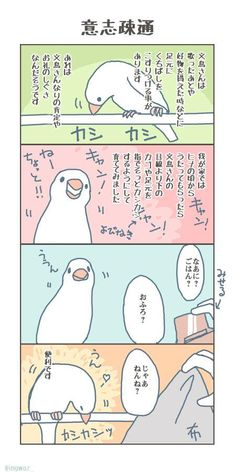 Cute Birds, Happy Animals, Work On Yourself, Parrot, Twitter Sign Up, Japan, Cartoon, Comics, Wings