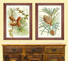 Vintage Pine Cone Set of 2 Giclee Prints Wall Art Antique