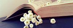 Mistral-il-vento-il-libro-e-la-poetessa