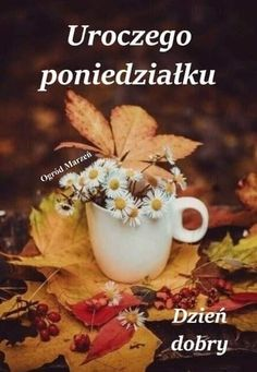 Tableware, Beautiful Things, Pictures, Magick, Good Morning Monday Images, Quotes, Photos, Dinnerware, Tablewares