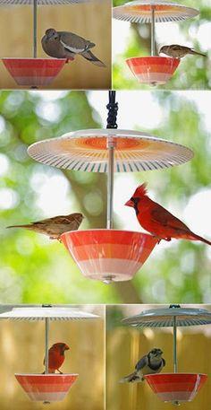 Яркие и симпатичные кормушки для птиц, которые возможно соорудить своими руками.