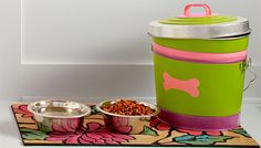 Make a pet food container by dressing up a plain metal pail with bands of color and a fun dog bone design from a free downloadable stencil.