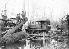 old logging train