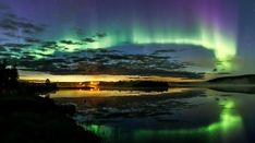Northern lights in Pello in Lapland Finland Lapland Finland, Light Pollution, See The Northern Lights, Arctic Circle, Natural Phenomena, Travel Photographer, Aurora Borealis, Natural Wonders, Beautiful World