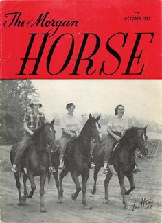 This first fall issue of The Morgan Horse magazine devotes its cover appropriately to the 100 mile trail ride. The trio shown are left to right: Nancy Ela on the Townshend Holstein Farm's Manzanita, her constant companion; Marcia Robinson on the farm's Townshend Gladalect; and third Jane Clark on her Soneldon, winner of the light-weight trophy. October 1953