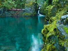 Opal Pool—Willamette National Forest, Oregon: A leap into the refreshingly brisk…