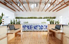 Beautiful biophilic office environment. Plants. Wood. birkenstock clifton hill pictures - Google Search