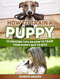 How To Train A Puppy: 22 Amazing Tips on How to Train Your Puppy Not to Bite (How To Train A Puppy, Puppy Training, Puppy Training books) - http://www.thepuppy.org/how-to-train-a-puppy-22-amazing-tips-on-how-to-train-your-puppy-not-to-bite-how-to-train-a-puppy-puppy-training-puppy-training-books/