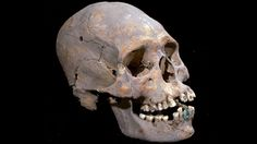 """""""La mujer de Tlailotlacan"""" - 1600 year-old burial was discovered in Tlailotlacan, near Teotihuacan, Mexico. The Woman of Tlailotlacan was between 35 and 40 years old, her cranium had been elongated by extreme fronto-occipital compression and her teeth encrusted with pyrite. Archaeologists believe she was a member of the nobility from the southern Mexico. """"La mujer de Tlailotlacan"""" was buried around 350-400 AD and is one of the most altered bodies discovered in Teotihuacan."""