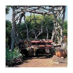 Rustic DIY Arbor Idea.