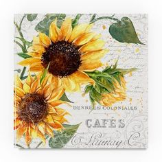 """Trademark Art 'Summertime Sunflowers II' Graphic Art Print on Wrapped Canvas Size: 18"""" H x 18"""" W"""