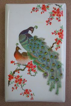 Peacocks pencil case (China, 1980s) front