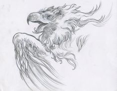 Gryphon! / Cory Godbey Griffins, Copy Paper, Sketches, Drawings, Painting, Art, Art Background, Painting Art, Kunst