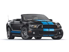 2010 Shelby GT500 Mustang....I can has????
