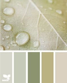 relaxing, cottage colors Master bedroom walls (green)
