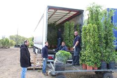 The boys unloading yet another lorry from Europe at Hortus Loci.