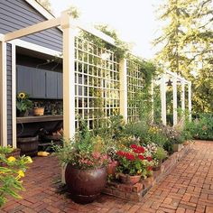 A trellis fence or screen is the perfect way to turn your backyard into a private escape. Whether wood or metal, a garden trellis creates the perfect backdrop for outdoor living spaces. Browse these trellis plans to find beautiful design and DIY ideas. Arbors Trellis, Diy Trellis, Garden Trellis, Trellis Ideas, Rose Trellis, Cheap Trellis, Porch Trellis, Wisteria Trellis, Privacy Trellis