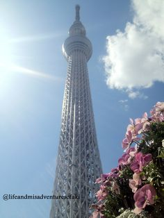 Tallest structure in #Japan