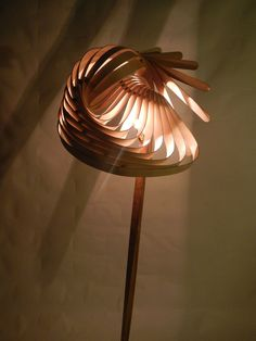 Nature Inspires Us All: Wooden Lamps by Charlie Whinney! | http://www.designrulz.com/product-design/2012/10/nature-inspires-us-all-wooden-lamps-by-charlie-whinney/